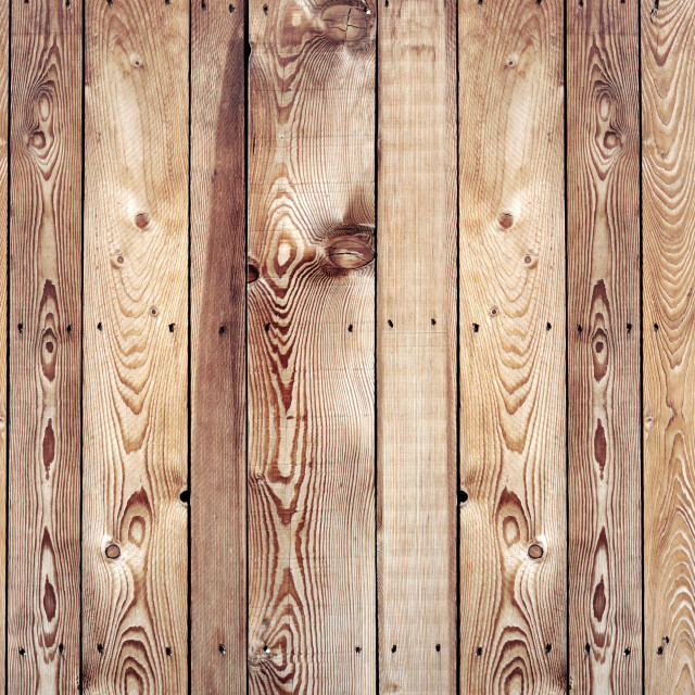 """""""old raw boards in fir tree nailed and forming a panoramic wooden background"""" stock image"""