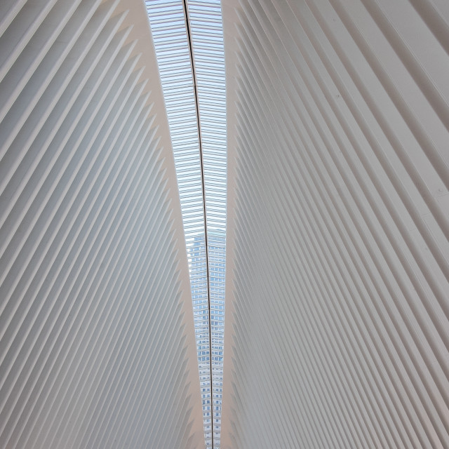 """""""The Oculus, Westfield Shopping Mall, World Trade Centre, Manhattan."""" stock image"""