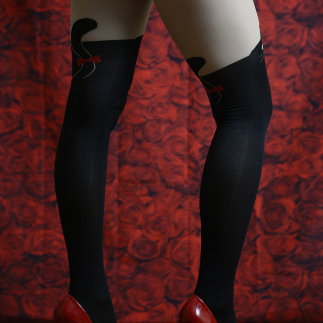 """""""red roses, red heels 2"""" stock image"""