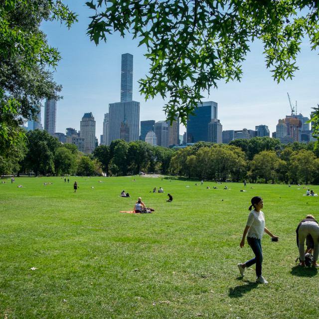 """""""Central Park, New York."""" stock image"""