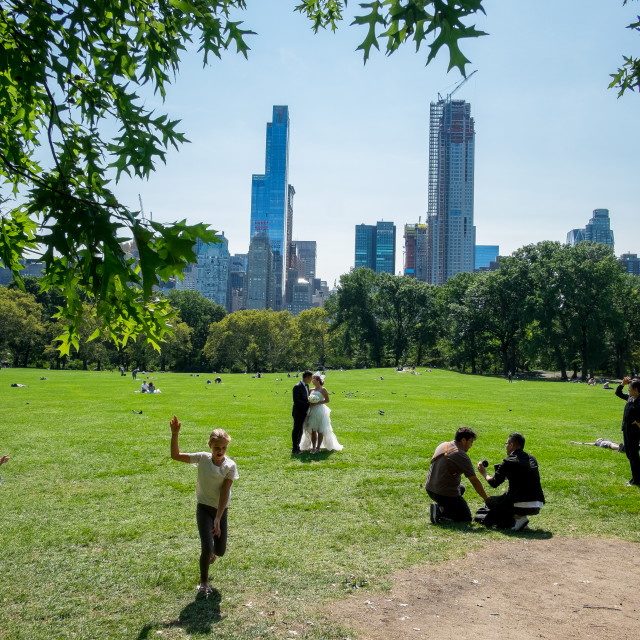 """""""Central Park, New York 2"""" stock image"""