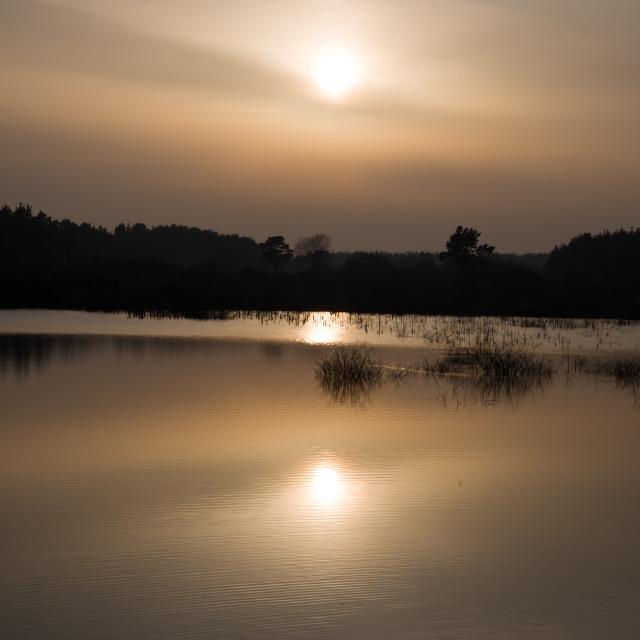 """Hazy Sun over Lake"" stock image"