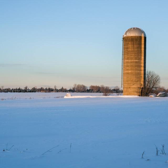 """""""Concrete tower silo in winter field"""" stock image"""