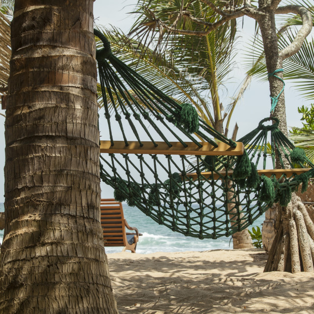 """""""Hammock in the shades of palm trees on the beach of a resort"""" stock image"""