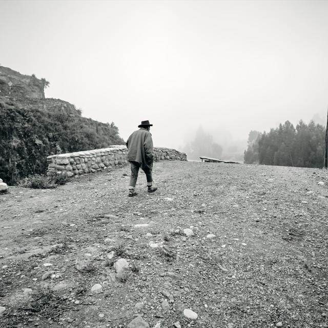 """Man And Condor"" stock image"