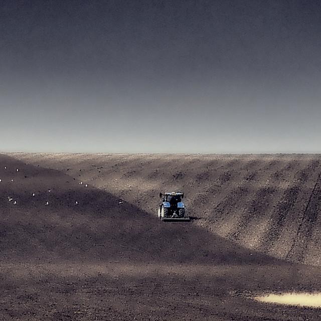 """Springtime Ploughing"" stock image"