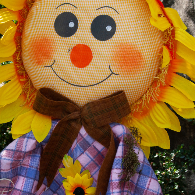 """""""Kettlewell Scarecrow Festival and Trail, Sunflower. Yorkshire Dales, England."""" stock image"""