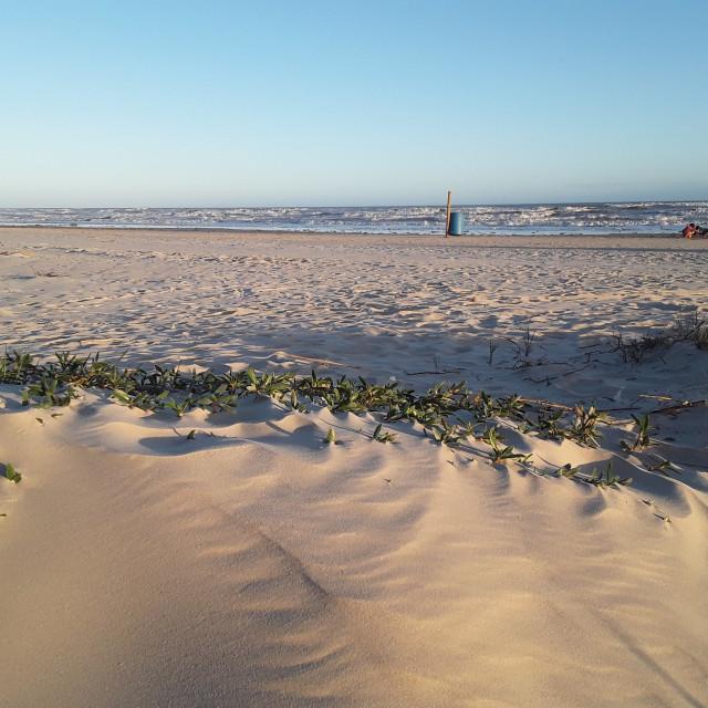 """""""Beachy days"""" stock image"""