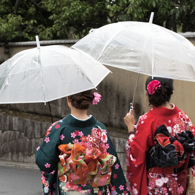 """""""Elegant kimono"""" stock image"""