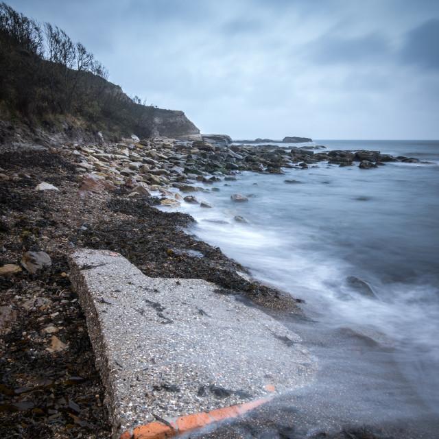 """""""Washed up at Cornelian Bay"""" stock image"""