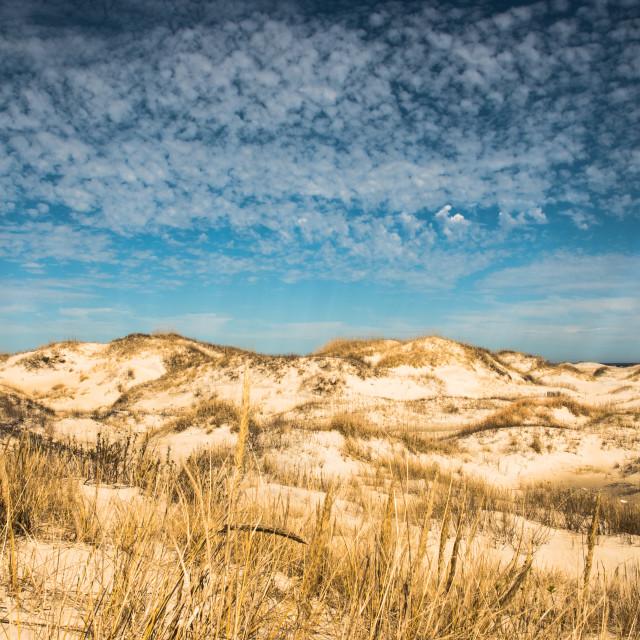 """Sand Dunes & Blue Sky"" stock image"