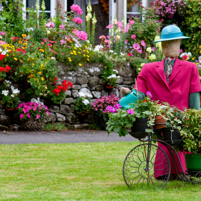 """""""Kettlewell Scarecrow Festival and Trail, Garden Lady. Yorkshire Dales, England."""" stock image"""