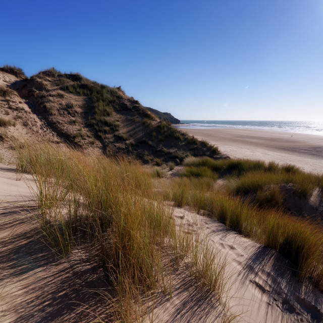 """Sand dunes of Hatainville in Cotentin coast"" stock image"
