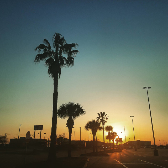 """City sunset"" stock image"