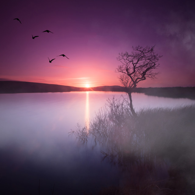 """""""Sunset over Broad Pool"""" stock image"""