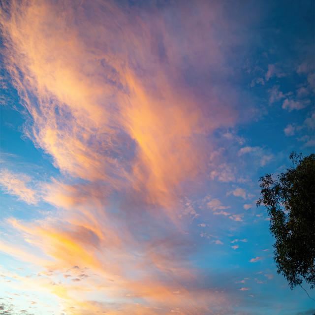 """Evening High Sunset Clouds"" stock image"