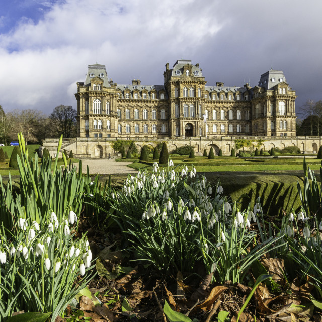 """""""Snowdrops at the Bowes Museum"""" stock image"""