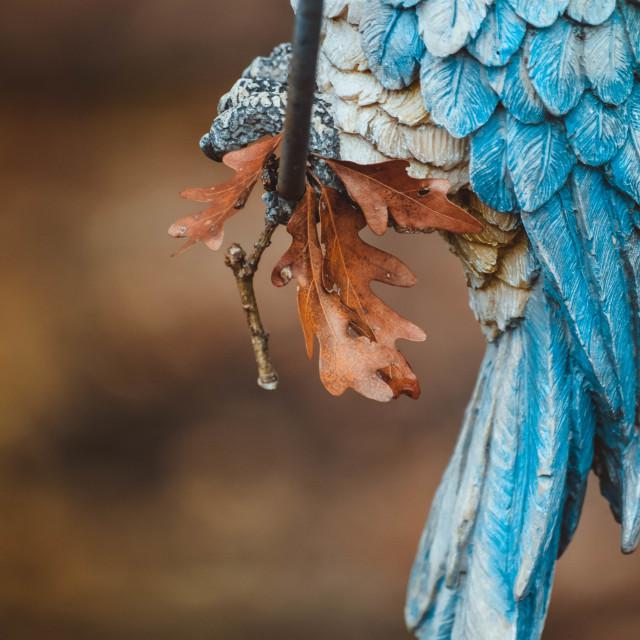 """""""Fake Parrot with a wilted leaf"""" stock image"""