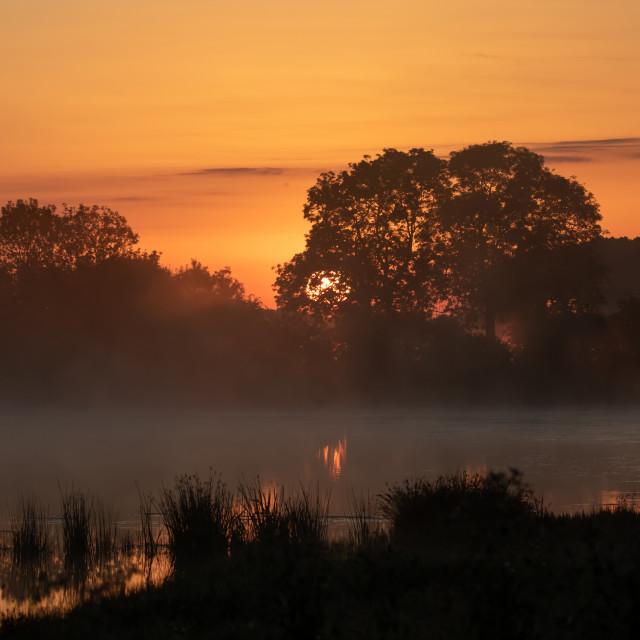 """""""Sunrise at Staveley"""" stock image"""