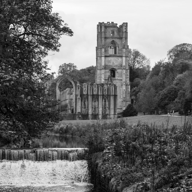 """""""Black and White Fountains Abbey"""" stock image"""