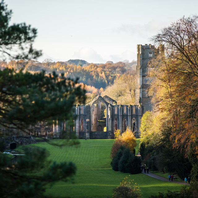 """""""Distant Fountains Abbey"""" stock image"""