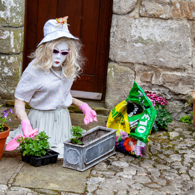 """""""Kettlewell Scarecrow Festival and Trail. Lady Potting Plants. Yorkshire Dales, England."""" stock image"""