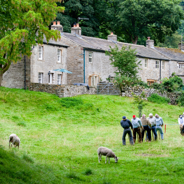 """""""Kettlewell Scarecrow Festival and Trail, Tug of War.Yorkshire Dales, England."""" stock image"""