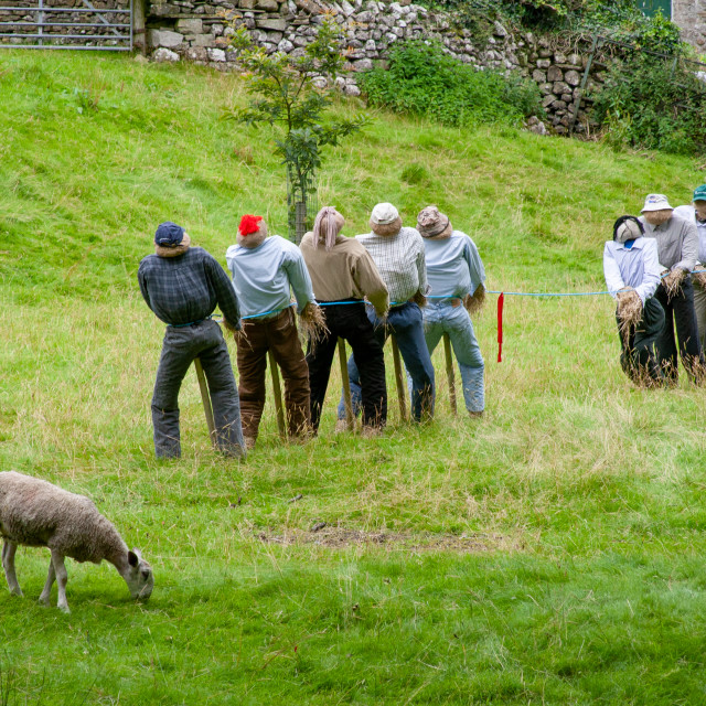 """""""Kettlewell Scarecrow Festival and Trail, Tug of War. Yorkshire Dales, England."""" stock image"""