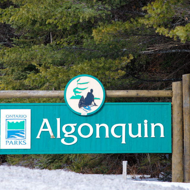 """Algonquin Provincial Park sign at East Gate"" stock image"