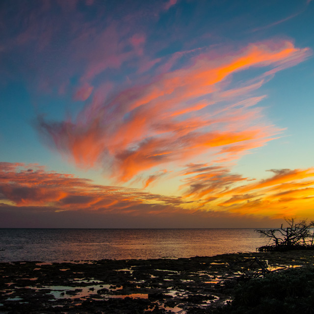 """""""Sunset on Big Pine Key (1)"""" stock image"""