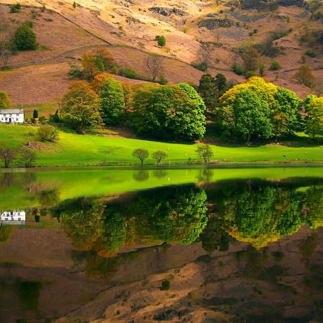 """Loughrigg Tarn"" stock image"