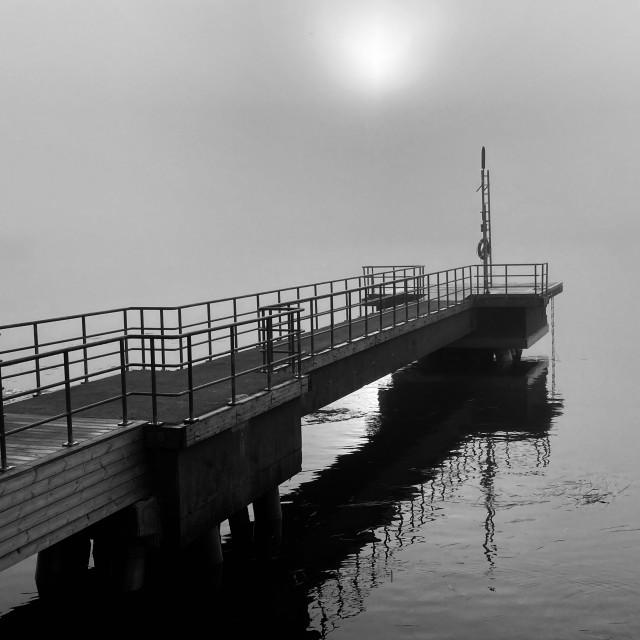 """""""BW foggy morning"""" stock image"""