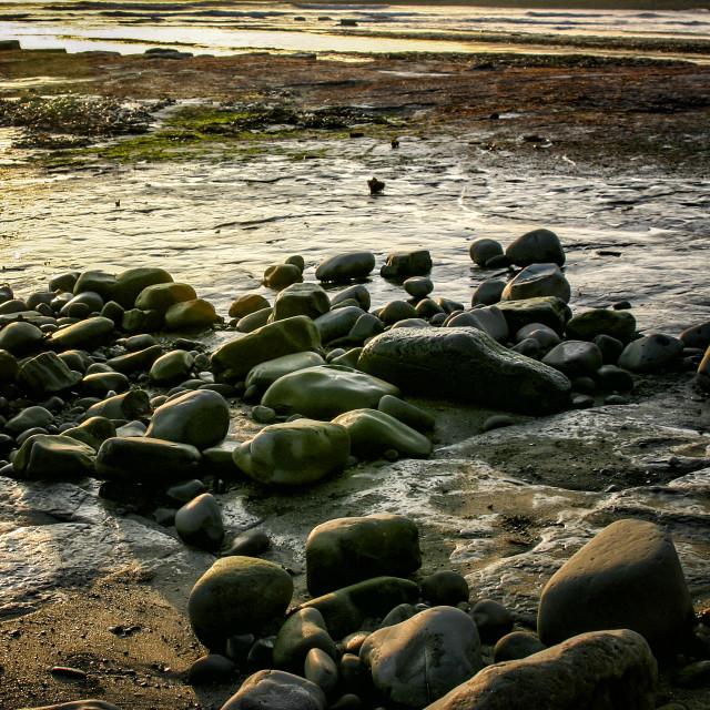 """""""Kimmeridge Beach"""" stock image"""