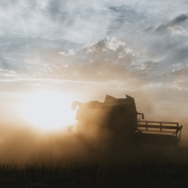 """Silhouette of combine harvester in the light of sunset"" stock image"