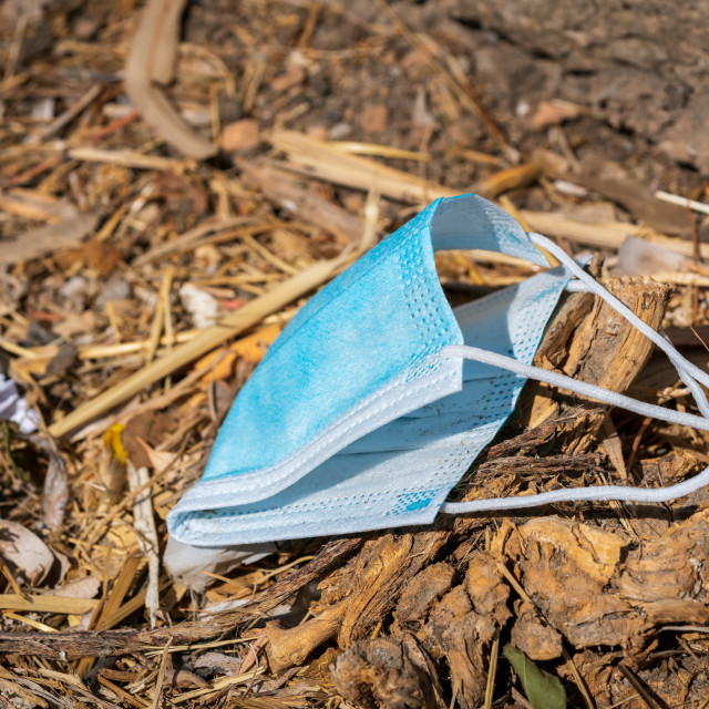 """""""Discarded blue disposable face covering 1"""" stock image"""