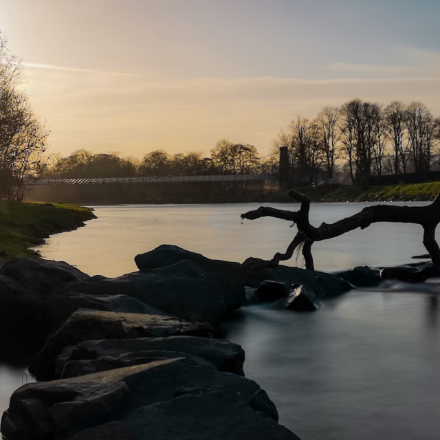 """""""Golden hour on the River Tweed"""" stock image"""