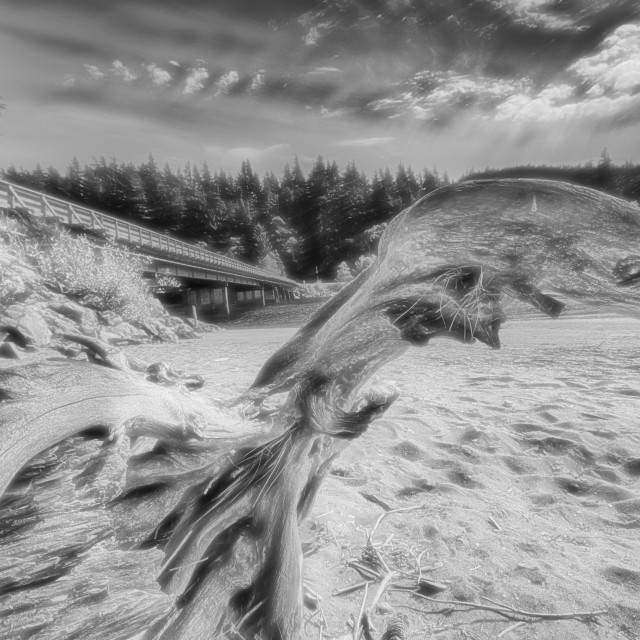 """""""Driftwood Abstract"""" stock image"""
