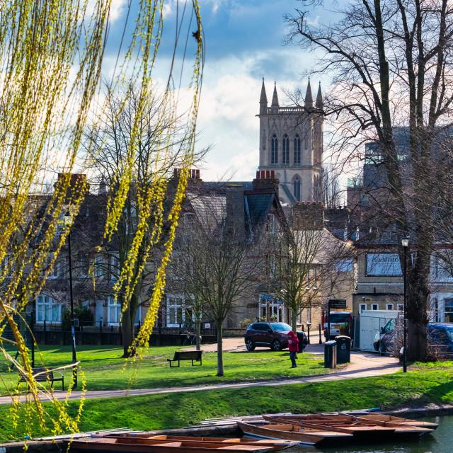 """The River Cam. Cambridge UK."" stock image"