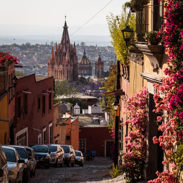 """Flowered streets of San Miguel de Allende, Mexico"" stock image"
