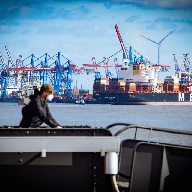 """""""Blick von Teufelsbrück auf den Containerterminal Buchardkai"""" stock image"""