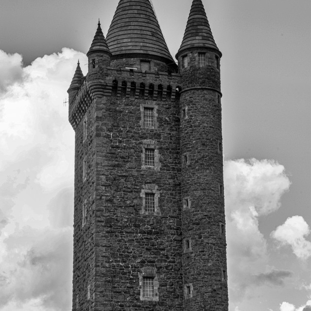 """""""Scrabo Tower"""" stock image"""