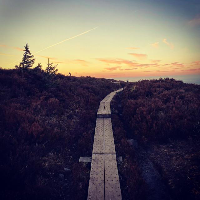 """Boardwalk Sunsets"" stock image"