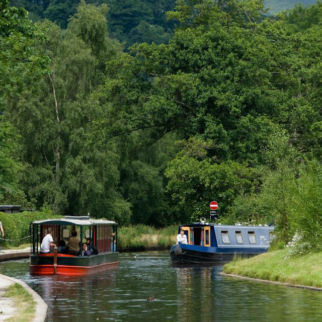 """Llangollen Canal 6"" stock image"