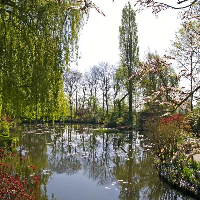 """""""Spring Water Garden at Giverny"""" stock image"""