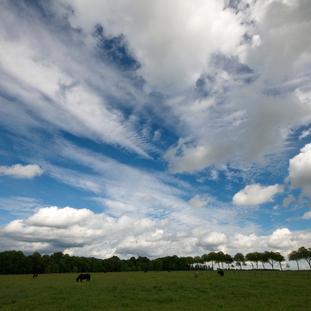 """""""Meadow and cloudscape"""" stock image"""