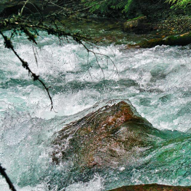"""Rapid Shutter Rapids"" stock image"
