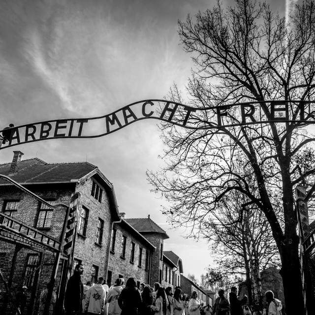 """""""Auschwitz 1 Entrance"""" stock image"""