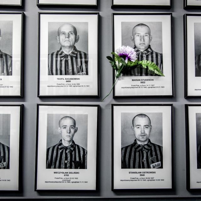 """Auschwitz 1 portraits"" stock image"