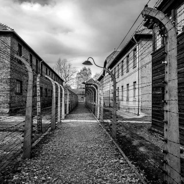 """""""Auschwitz 1 view of electric fence"""" stock image"""