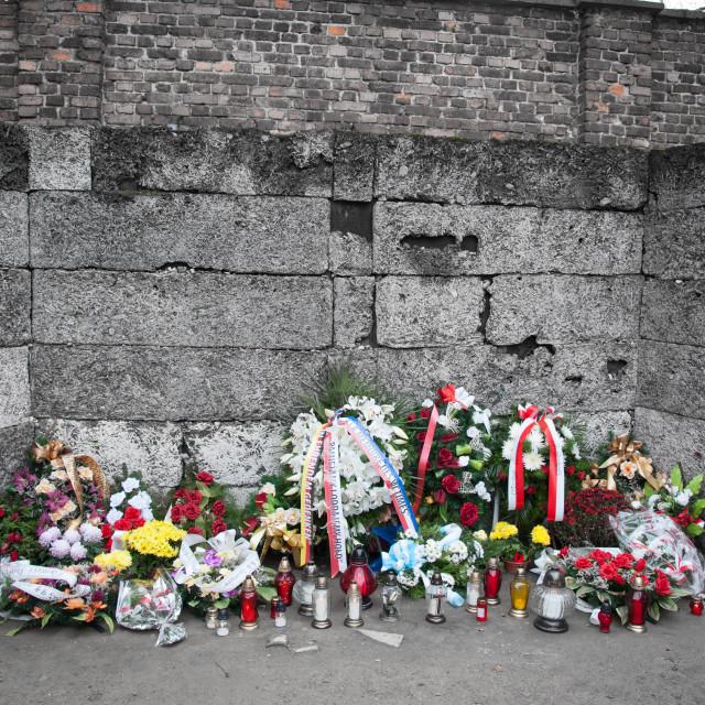 """Auschwitz 1 Block 11 death wall"" stock image"